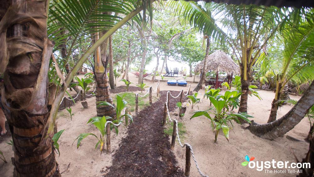 little-corn-island-nicaragua-beach-bungalow-eco-lodge-resort-hotel-grounds-3