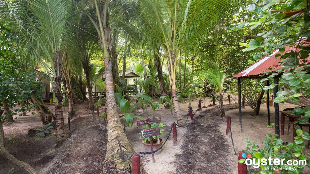 little-corn-island-nicaragua-beach-bungalow-eco-lodge-resort-hotel-grounds-4
