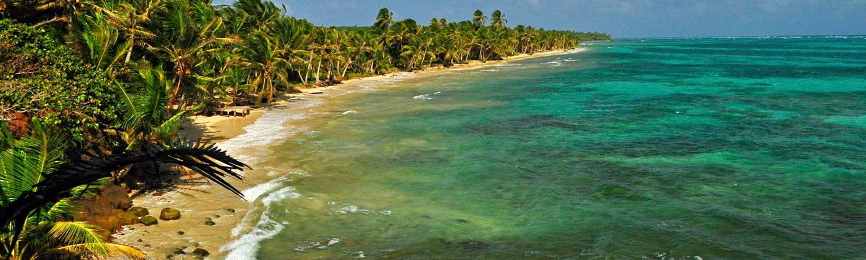 Little Corn Island Beach and Palm Trees