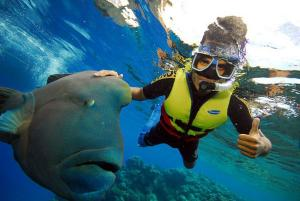 little-corn-island-nicaragua-beach-bungalow-eco-lodge-resort-hotel-snorkeling