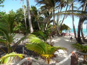 little-corn-island-nicaragua-beach-bungalow-eco-lodge-resort-hotel-grounds-beach
