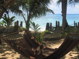 little-corn-island-nicaragua-beach-bungalow-eco-lodge-resort-hotel-grounds-view
