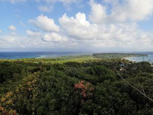 little-corn-island-nicaragua-top-island-view