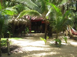 turned-turtle-restaurant-little-corn-island-beach-bungalow-eco-lodge-resort-outside